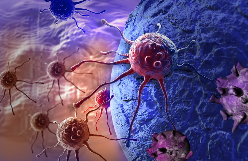 AACR Establishes New Cancer Evolution Working Group