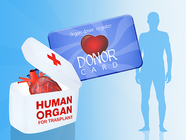 Op-Ed: Organ and Tissue Donors: The Best of Humankind | National Donate Life Month